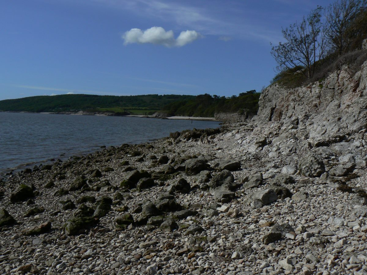 Limestone cliffs and scree at Silverdale beach
